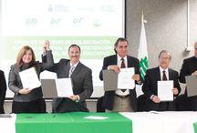 INEA / Instituto Nacional para la Educación de los Adultos Delegación Nuevo León ( INEA )