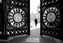 Black & White  / by Lori Sanci