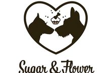 Cutie&Flower Dog Bakery
