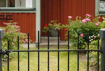 Perinnepiha / Helppohoitoiset perinnekasvit ja käytännönläheinen tyyli sopivat yhtälailla puutaloon kaupungissa  kuin maaseudulle ja vapaa-ajanasunnoillekin.