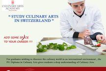 Study in Switzerland | Riya Education Pvt Ltd