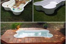 piscines pour chiens