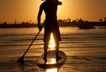SUP - SURF - WINSDSURFING