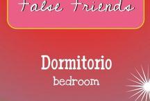 False Friends/ Falsos Amigos