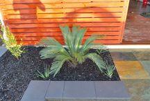 Plants/horticulture