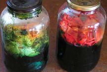 colorazione naturale ed ecoprinting