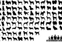 cat&dog    素材