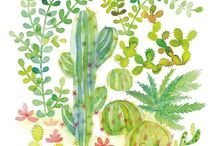 Jolies illustrations