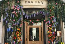 York in Bloom 2018 / York in bloom 2018 from 5th to 8th July.
