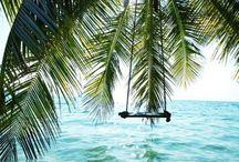 keep it tropic