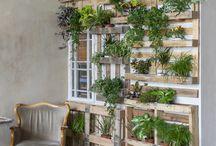 Balcony & Herb garden