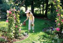 Garden Ideas / Garden ideas to make your garden and yard beautiful and functional.