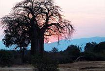 Polokwane, Sudáfrica
