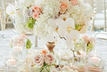 tw | stydia wedding