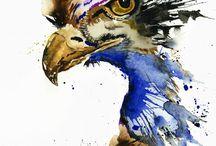 18 Eagles