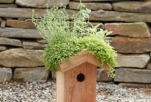 Green roofs for the garden and home / Find space for green anywhere including roofs
