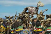 Amazing pictures in Africa