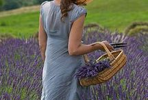 Lavender Women