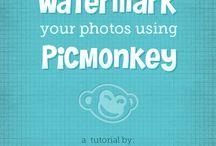 PicMonkey  / by Tiffany Marshall