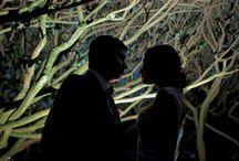 Fotógrafo Para Matrimonio / Imágenes y contenido de nuestra pagina web