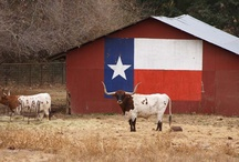 Texas, gotta love it!