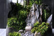 Home plant decor ideas