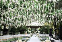 Wedding Ideas / by Rebecca Taylor