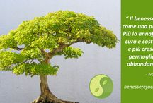 Benessere Facile / Le citazioni e le immagini più belle tratte dal sito benesserefacile.net , portale dedicato al #benessere e alla #salute