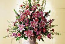 [R] Flores