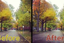 Photoshop / Different images, ehancements and designs in the wonderful world of photoshop.