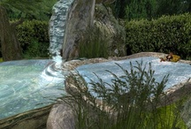Hot Tubs & Other Water Options / by Wendy Wallace