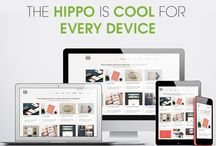 Latest Technology / StoreHippo boasts of using the newest available technology that is LEAN & MEAN (Literally)