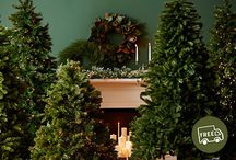 Our Holiday Greenery Guide / How lovely are your branches! This year, deck the halls with this comprehensive collection of holiday greenery. Get our tips for achieving a perfectly festive look, then shop the trees, garlands, and wreaths to ornament your space.  / by Joss & Main