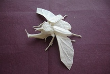 Paperstuffs / by Edd Timmons