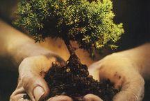 Eco-friendly Lifestyle