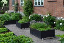 Forhøyde hagebedd