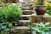 #Garden design#газон #Landscape design#Gardens#Ландшафтный дизайн#сад#