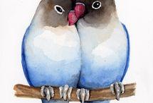 twee papagaien