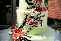 İrem / Düğün- nişan