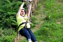 Fun Philippines / Fun things in the Philippines  #itsmorefuninthephilippines / by Jonha Revesencio