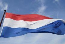 Netherlands / nl.findiagroup.com