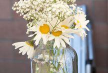 I  flowers  / by Adriana Rubio