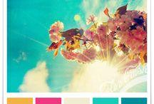 ●&|palettes●