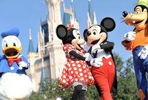 Everything Disney / We Love everything Disney!