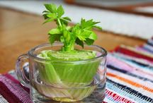 Greenfingered | Edible
