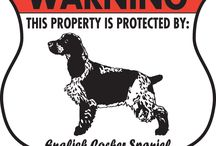 English Cocker Spaniel Signs and Pictures / Warning and Caution Dog Signs. https://www.signswithanattitude.com/english-cocker-spaniel-signs.html