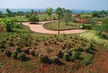Rock Garden / Rock Garden in Malvan is a best place to relax on the rocks and enjoy the calm of the sea side.
