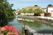 La Venise Verte et le Marais Poitevin