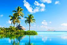 My Dream Cruise