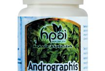 Jual Andrographis Centell HPAI Murah / Jual Andrographis Centell HPAI Murah. Agen stokis Andrographis Centell HPA Indonesia.